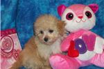 Picture of Little Marly...What A  Perfect Valentine Gift!!