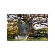 View full profile for Wild Oak Rat Terriers