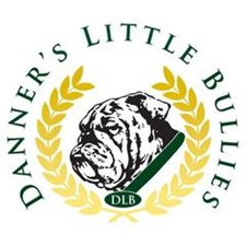 View full profile for Danner's Little Bullies