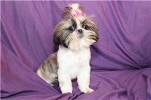 Picture of Winnie