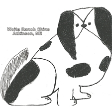 View full profile for Woita Ranch Japanese Chins, Llc