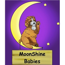 View full profile for Moonshine Babies