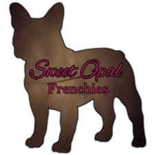 View full profile for Sweet Opal Farms, LLC