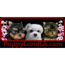 View full profile for Puppylandla