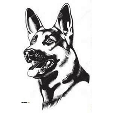View full profile for Toosweet Kennels