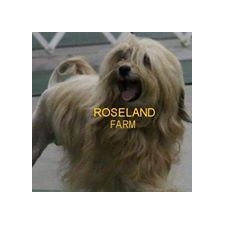 View full profile for Roseland Farm Lowchen