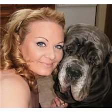 View full profile for Maximum Mastiffs