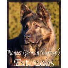 View full profile for Pioneer German Shepherds