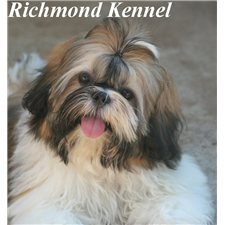 View full profile for Richmond Kennel