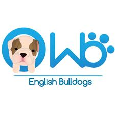 View full profile for Wb English Bulldogs