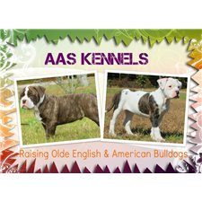 View full profile for AAS Kennels